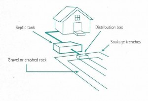 septic_tank_disposal_field